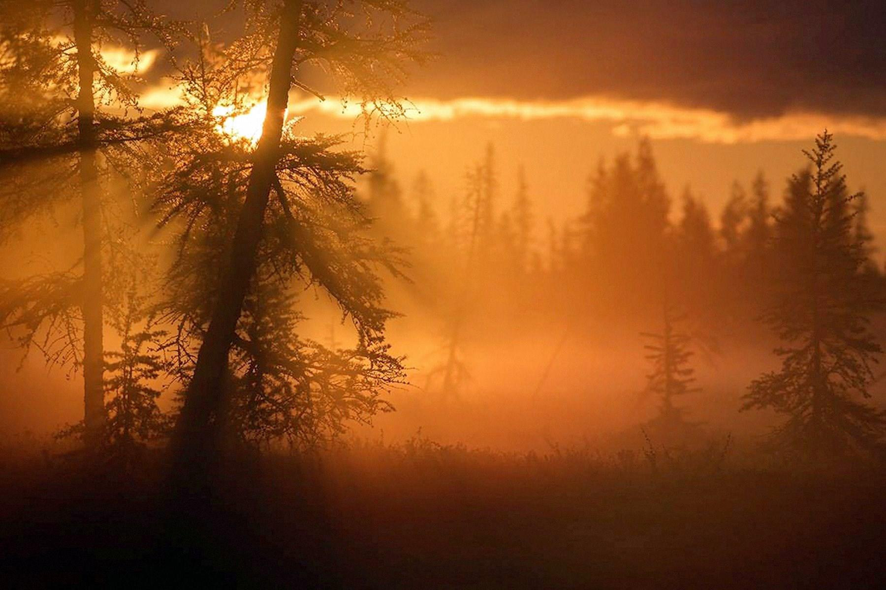 00 Andrei Snegirev. Dawn in the Yamalo-Nenets Autonomous Okrug. 2015